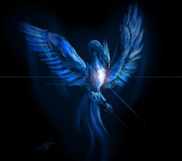 blue_phoenix_by_thegreatandmightyoz1_zps6c3a256c.jpg